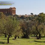 pagina facebook, offerte vacanze italia,