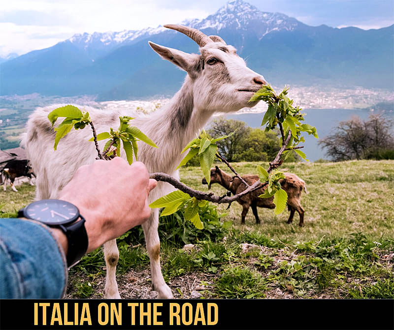 Italiani in vacanza on the road
